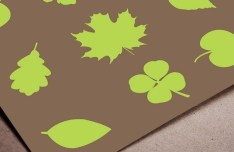 Set Of Various Green Leave Shapes Vector