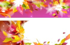 Colorful Spring Flower Frame Vector 01
