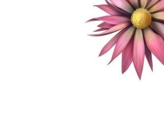 Fresh Flower Background Vector 02