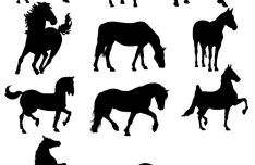 Horse Silhouettes Collection Vector