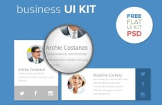 Flat Business UI Kit PSD