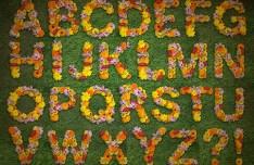 Floral Alphabets PSD