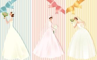 Beautiful Brides and Wedding Dresses Vector