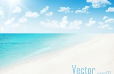 Sunny Beach Vector Background