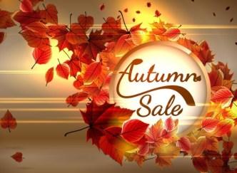 Elegant Red Leaves Autumn Sale Vector Background