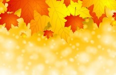 Fantasy Fall Maple Leaves Background Vector