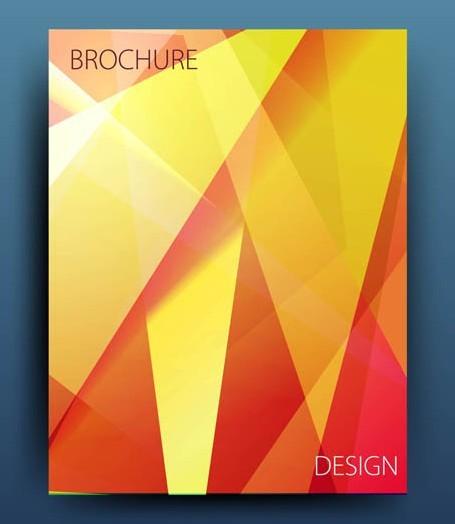 Orange Polygon Brochure Design Vector