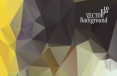 Modern Polygon Background Vector 05