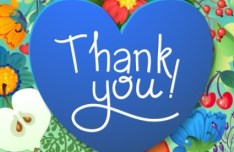 Blue Thank You Heart Vector