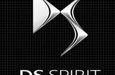 DS Spirit Logo Template Vector