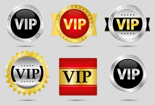 VIP Icon & Badge Set Vector
