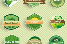Green Health Food Badge Set Vector
