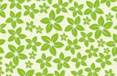 Summer Green Leaves Pattern Vector