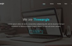 Threeangle Landing Page Template PSD