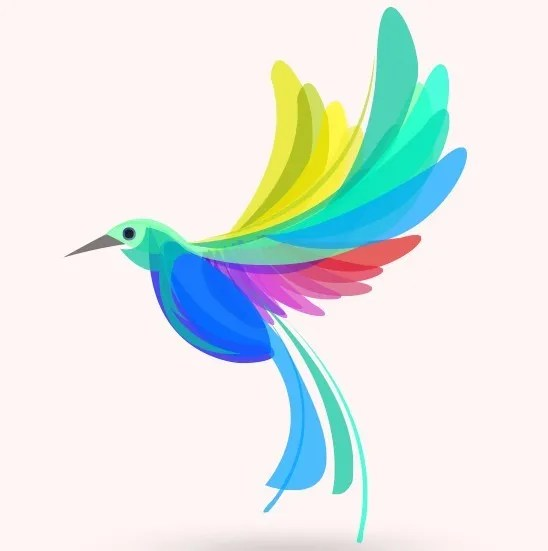 Colorful Summer Bird Vector Illustration