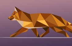 Polygon Mystery Fox Vector