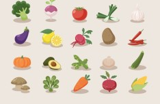 20 Vector Vegetable Icons