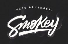 Smokey Brush Set
