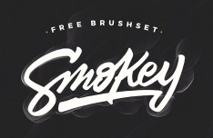 Smokey Brush Set