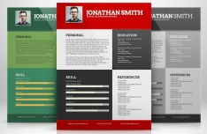 Flat Resume Templates (3 Colors)