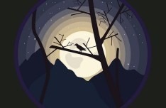 Moonlight Night Halloween Vector