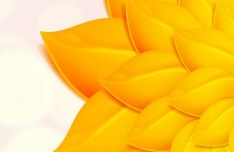 Autumn Gold Leaf Background Vector