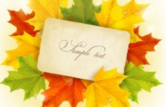 Autumn Leaves Card Template Vector