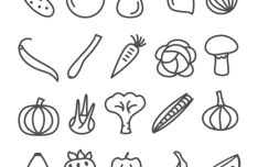 20 Vegetable and Fruit Icon Vector