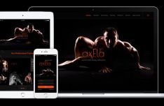 Axela Fitness Web Template PSD