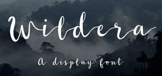 Wildera Brush Font