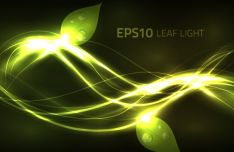 bright-leaf-light-background-vector