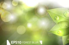 green-forest-blur-vector-background