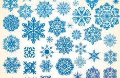 various-snowflakes-vector