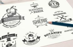 9 Insignia And Logo Mock-ups