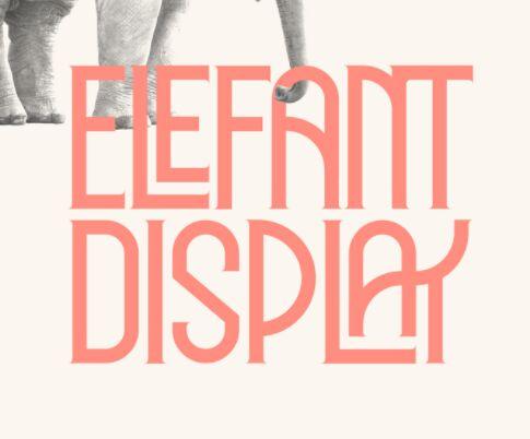 Elegant Display Font
