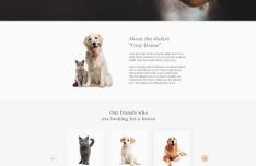 Animal Shelter Website Template PSD