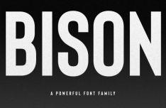 Bison Bold Font