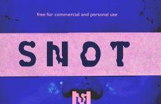 SNOT Display Font-min
