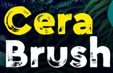 Cera Hand-crafted Brush Font