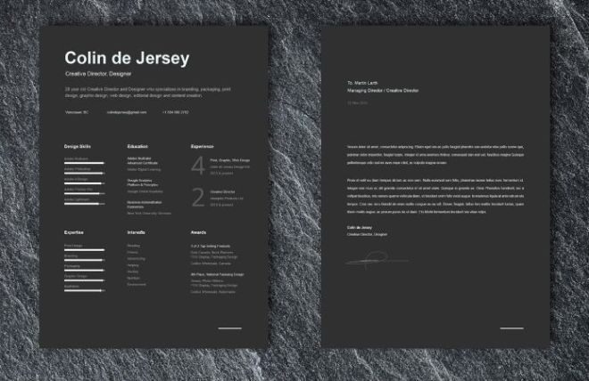 free professional resume and cover letter template for