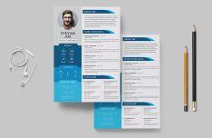 Personal Resume CV Template PSD & AI