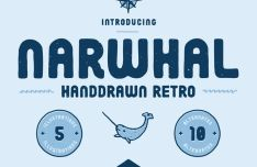 Narwhal Retro Font