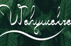WAHYUCAKRA Collygraphy Typeface
