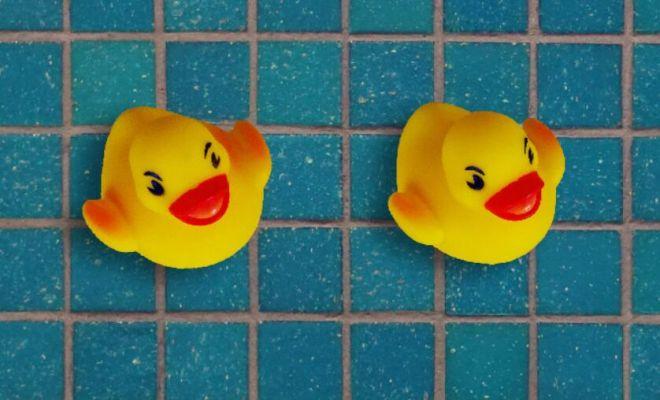 Rubber Duck PSD Template