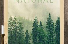Realistic Natural Poster PSD Mockup