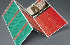 Modern Realistic Tri Fold Brochure Flyer PSD
