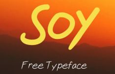 SOY Typeface