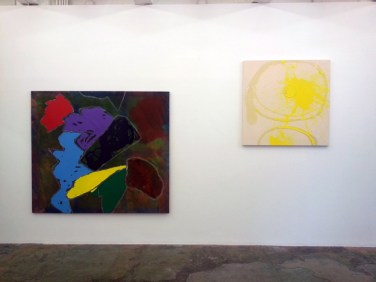 Installation view,Phigor, Dona Nelson