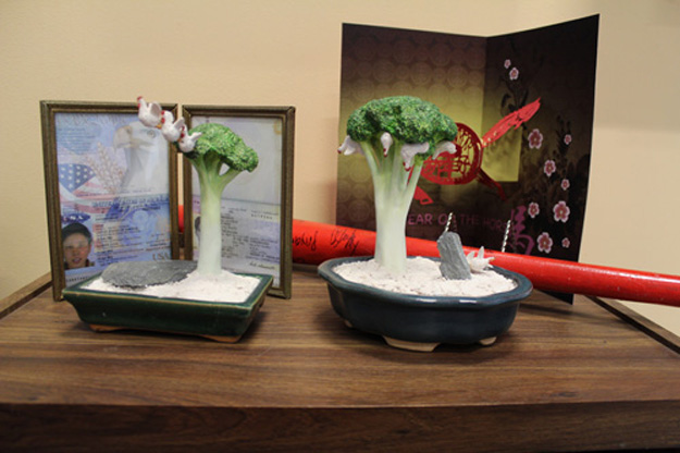 Bonsai trees from the Living Room