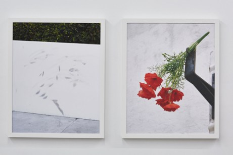 "Clark Mizono, ""Untitled"" and ""Untitled"""